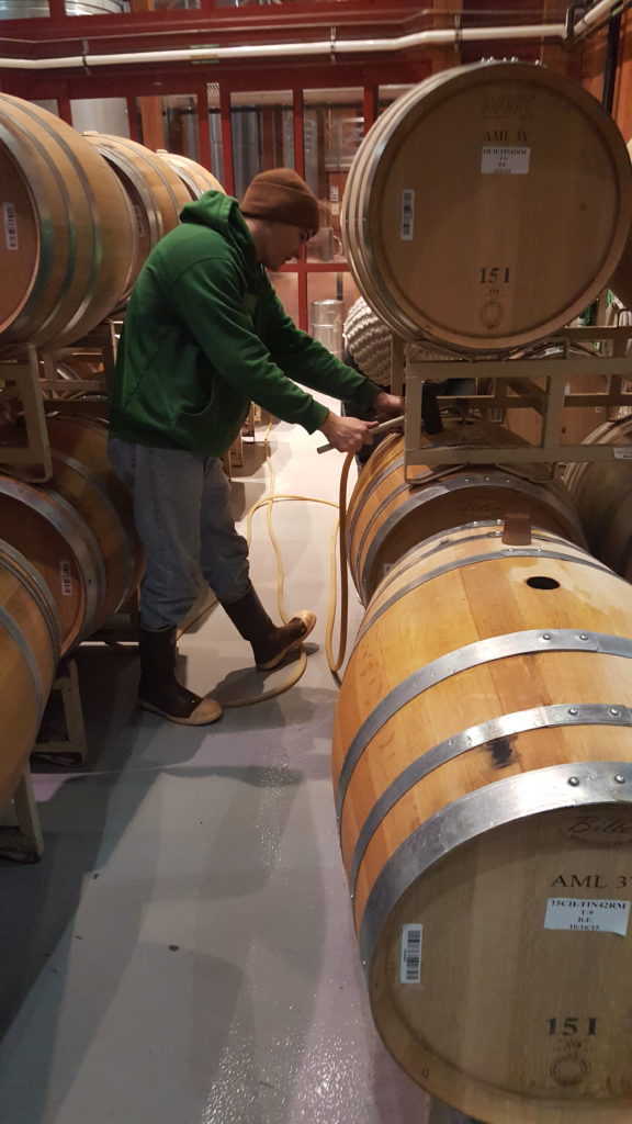 Topping up a barrel in Cakebread Cellars